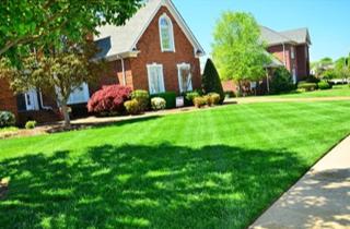 Turf Applications Make Beautiful Lawn