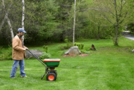 Lawn Winterizer Service
